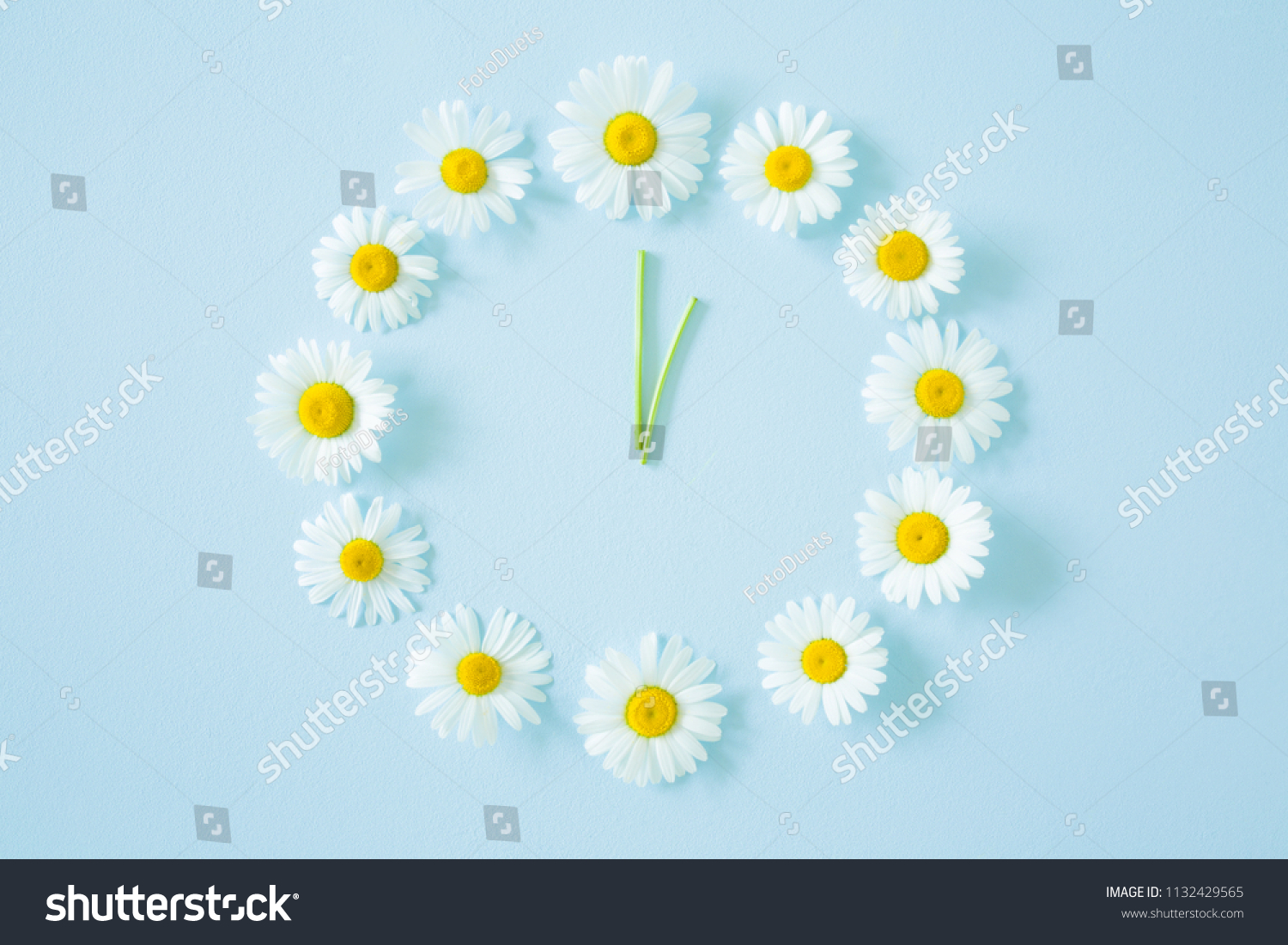 Flower clock created from fresh, beautiful white daisies on pastel blue background. Wild flowers. Soft light color. Time concept. #1132429565