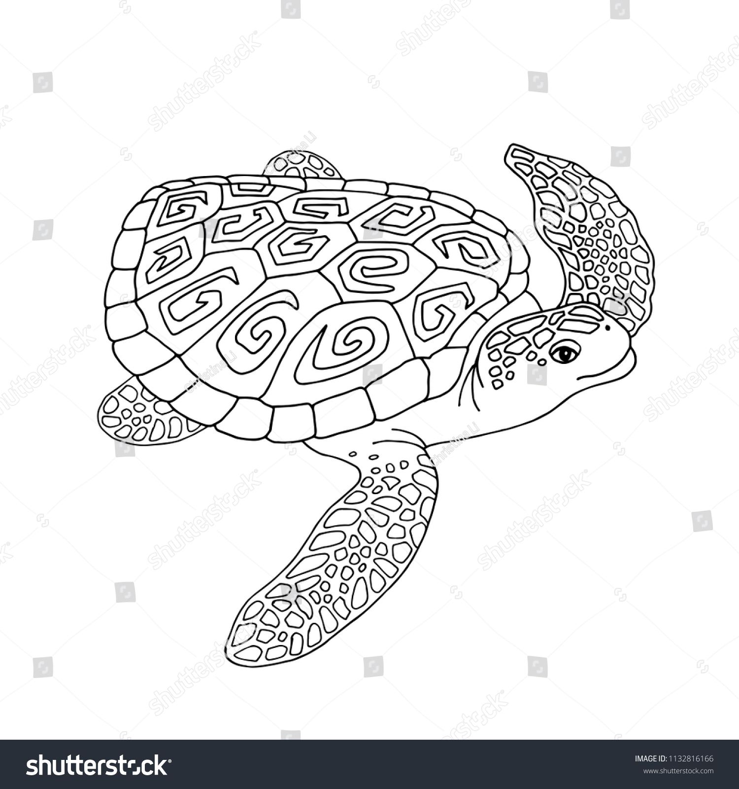 Turtle Black White Coloring Antistress Template Stock Vector