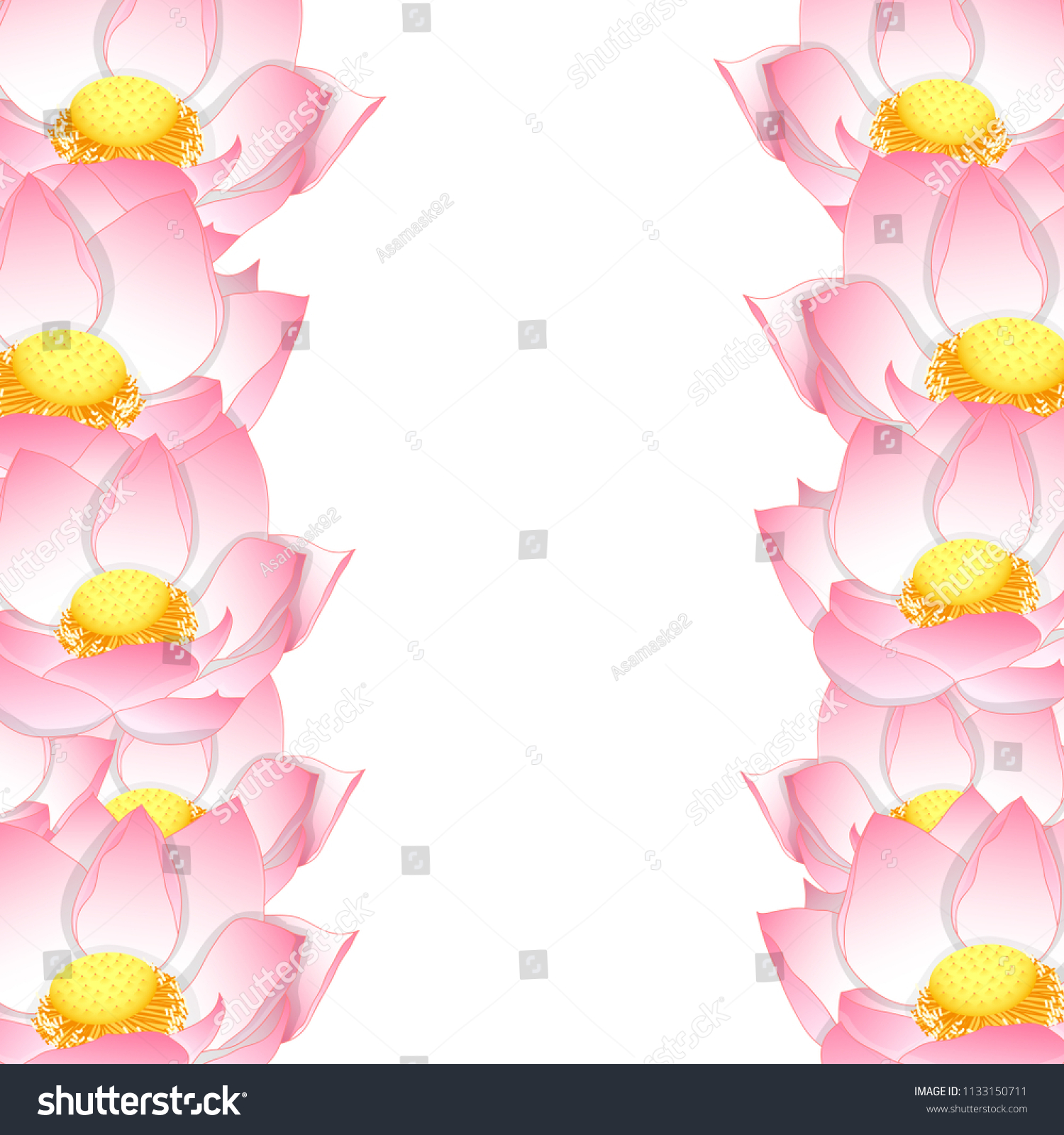 Pink Indian Lotus Border Nelumbo Nuciferasacred Stock Vector