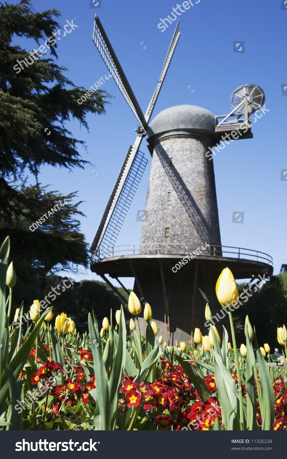 Historic Dutch Windmill At Queen Wilhelmina Tulip Garden In The Golden Gate Park San Francisco