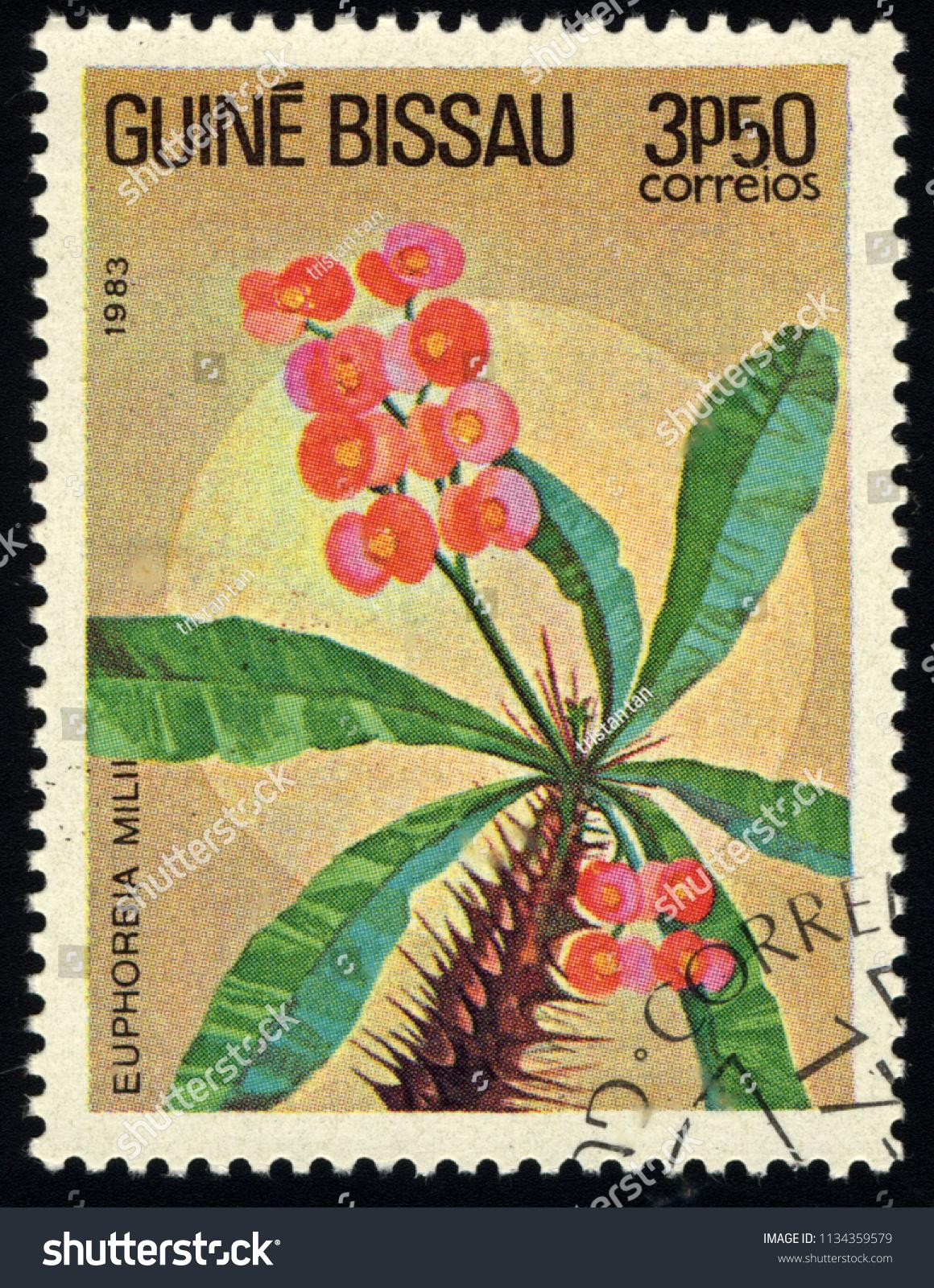 Singapore july 15 2018 stamp printed stock photo image royalty singapore july 15 2018 a stamp printed in guinea bissau shows euphorbia izmirmasajfo