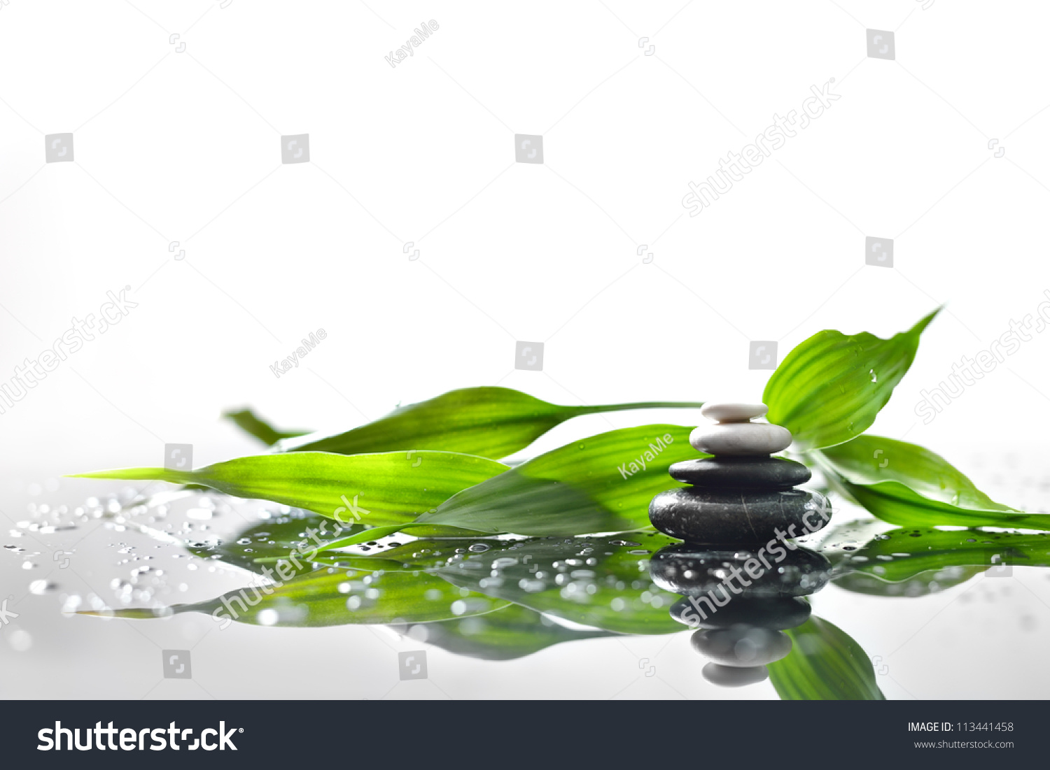 background spa stones sprig green bamboo stock photo