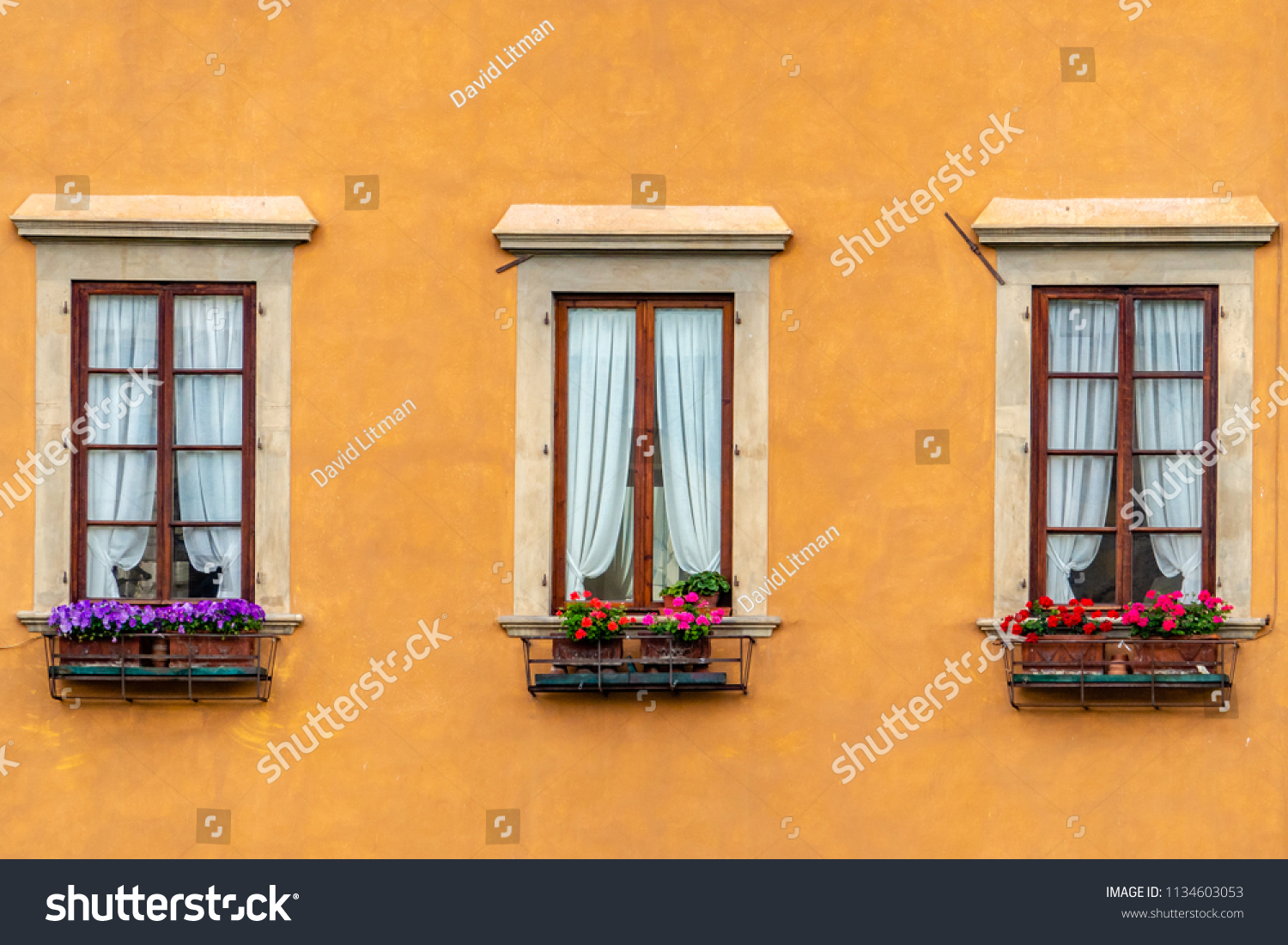 Three windows adorn a colorful orange/yellow building with flowers on windowsills in the Tuscany region of Italy in Florence, along the Arno River.