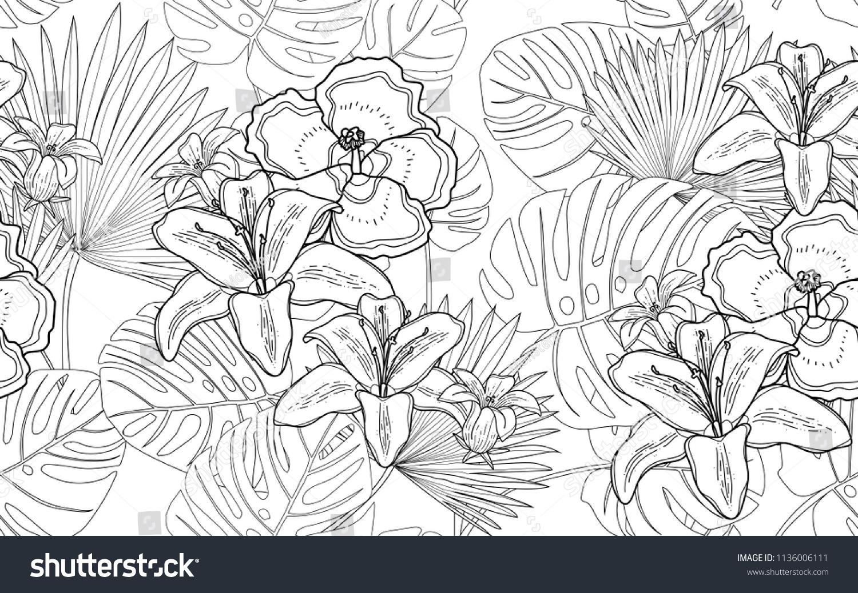Monstera Palm Hawaiian Flowers Big Leaves Stock Vector 1136006111