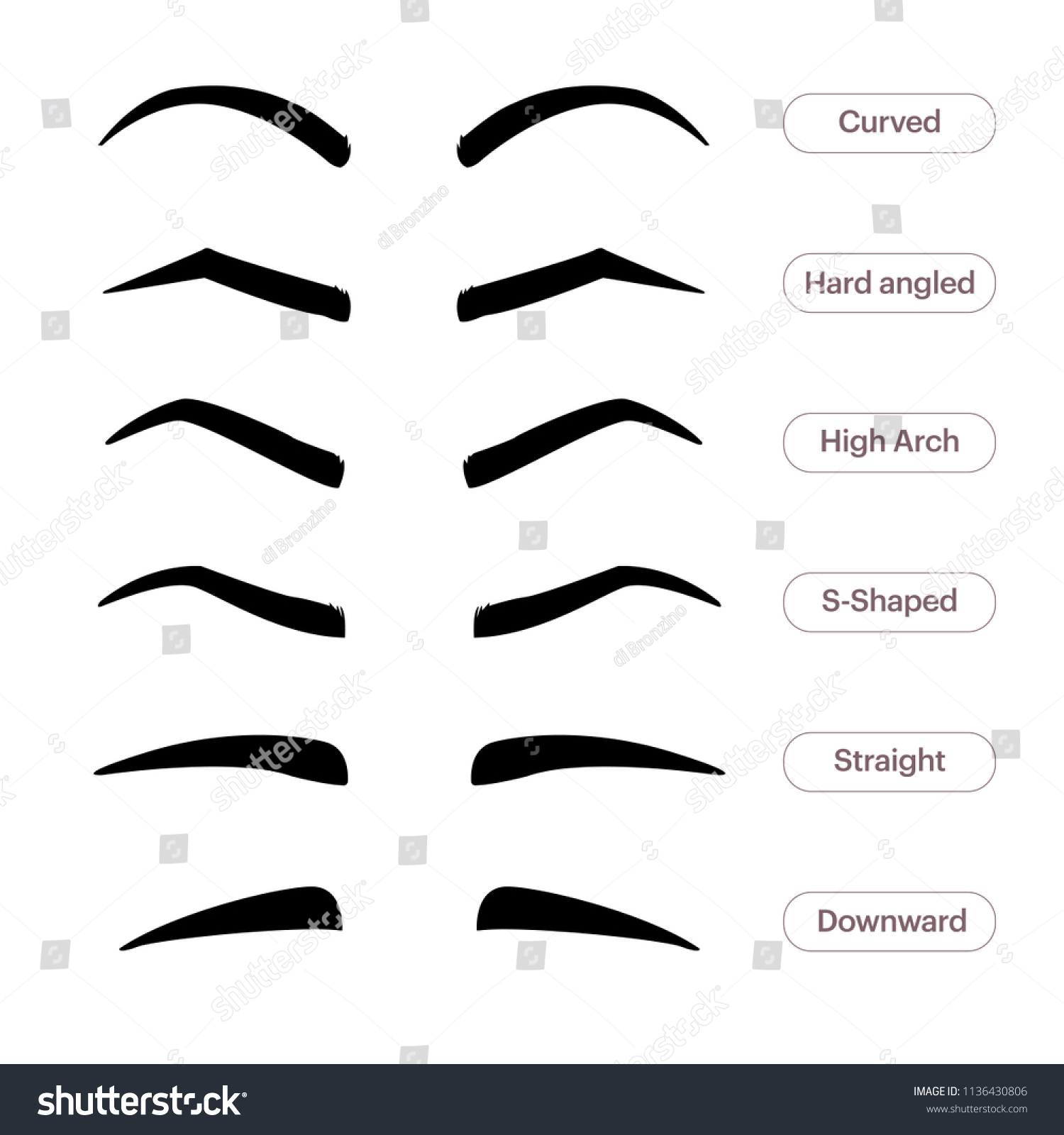 Eyebrow Shapes Various Types Eyebrows Classic Stock Illustration