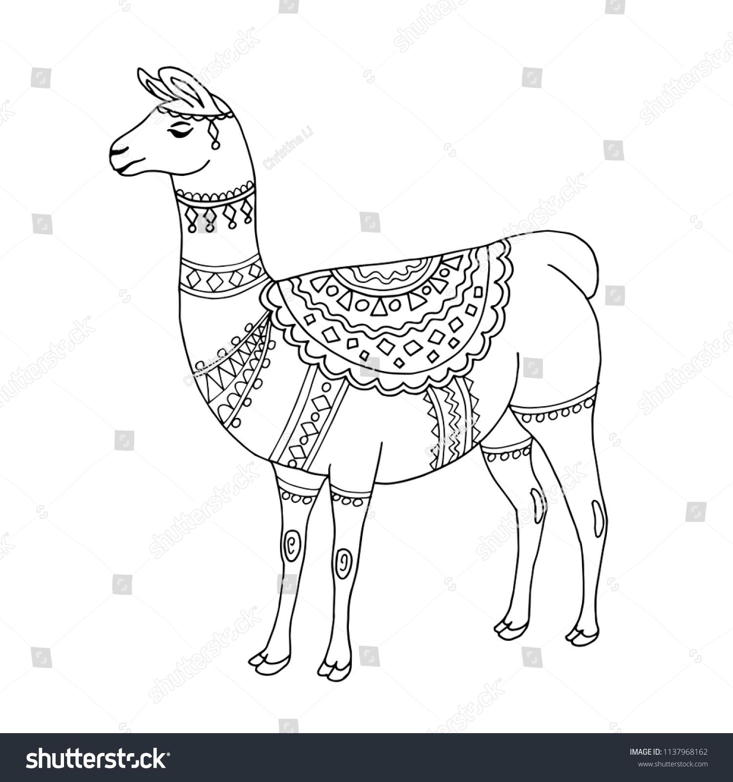 llama alpaca black white line art stock vector royalty free
