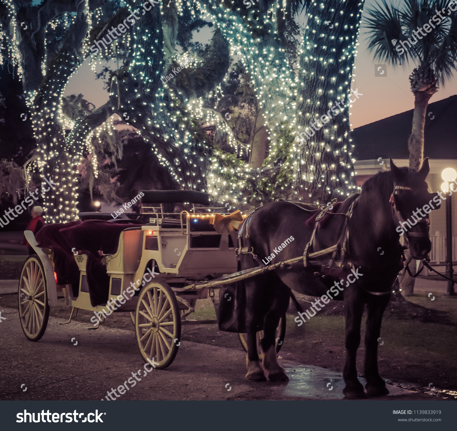 Christmas Lights Horse Carriage Holidays Stock Image 1139833919