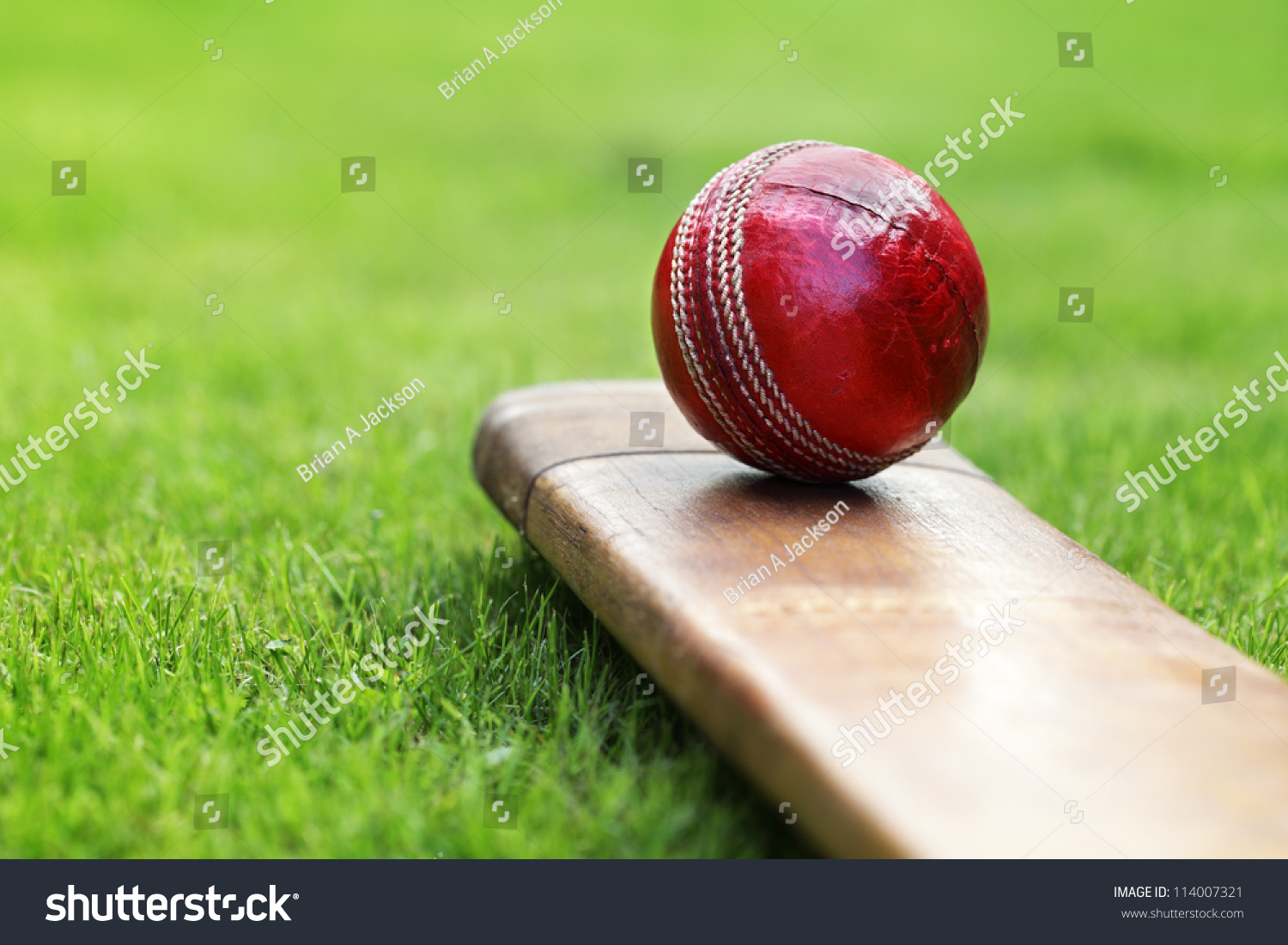 how to prepare a cricket pitch