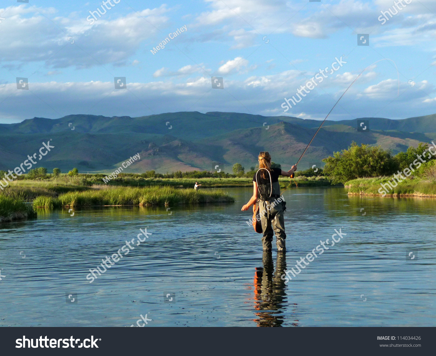 Fly fishing in a spring fed creek in idaho stock photo for Idaho fly fishing