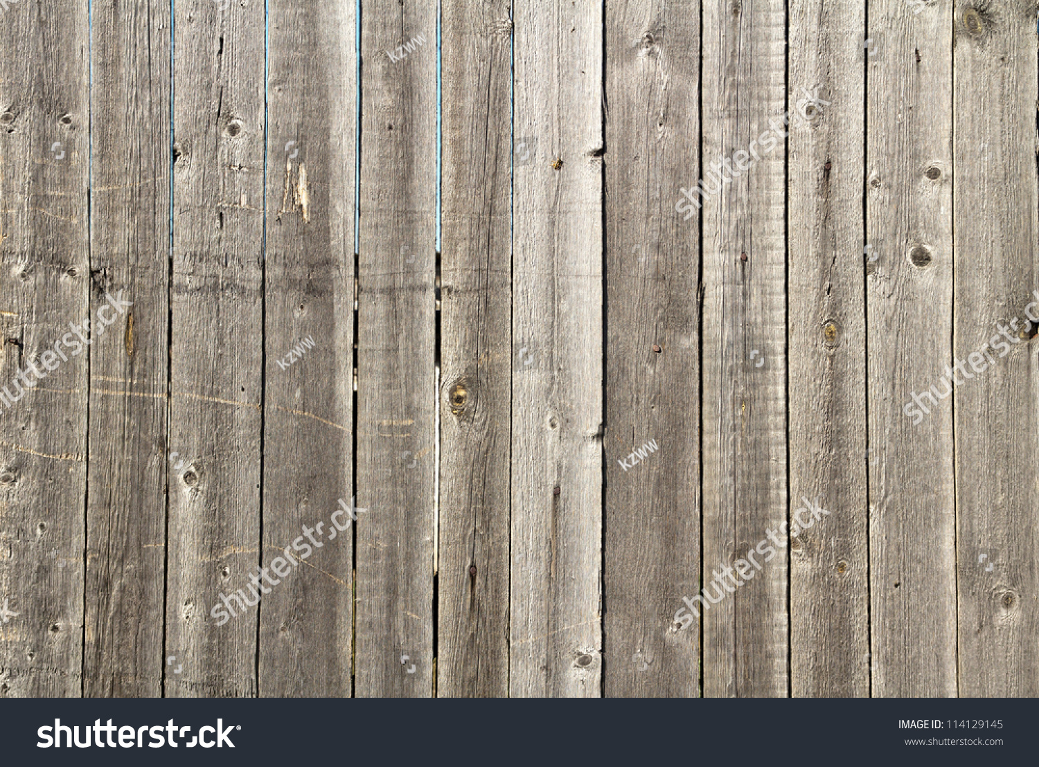 Old barn wood board stock photo 114129145 shutterstock for Where to buy old barn wood