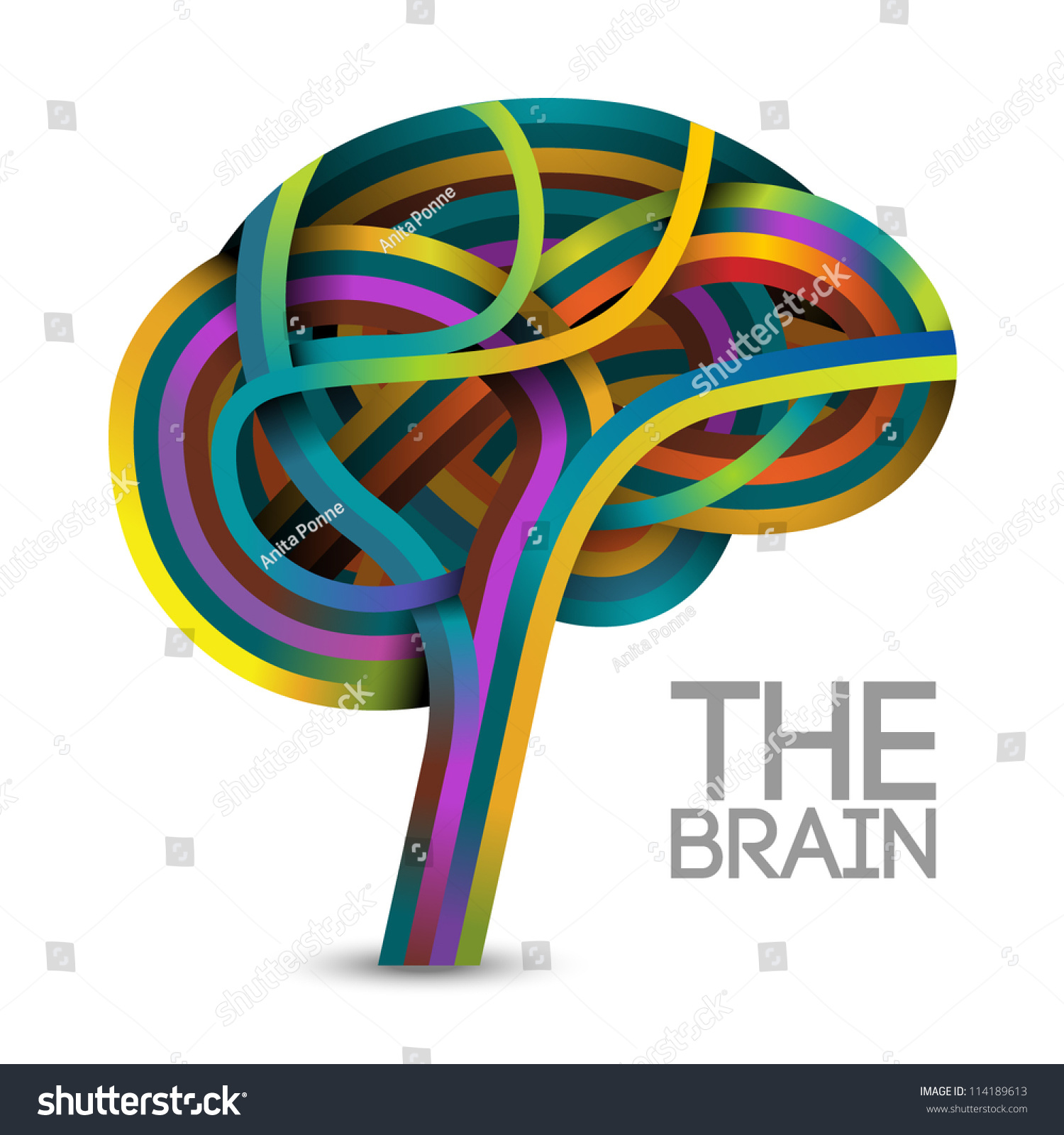 online image   photo editor shutterstock editor brain vector free download brain vector icon
