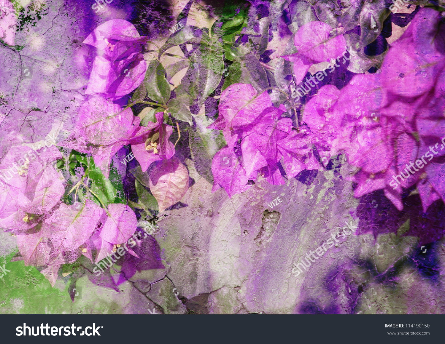 Violet Bougainvillea Stylized Floral Picture Patina Stock ...