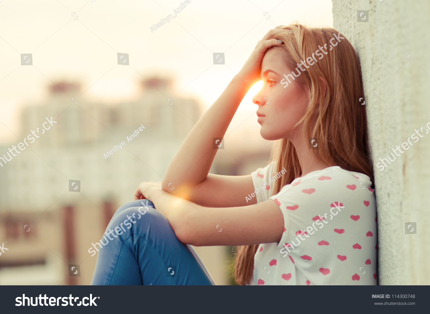 beautiful lonely sitting on roof stock photo 114300748