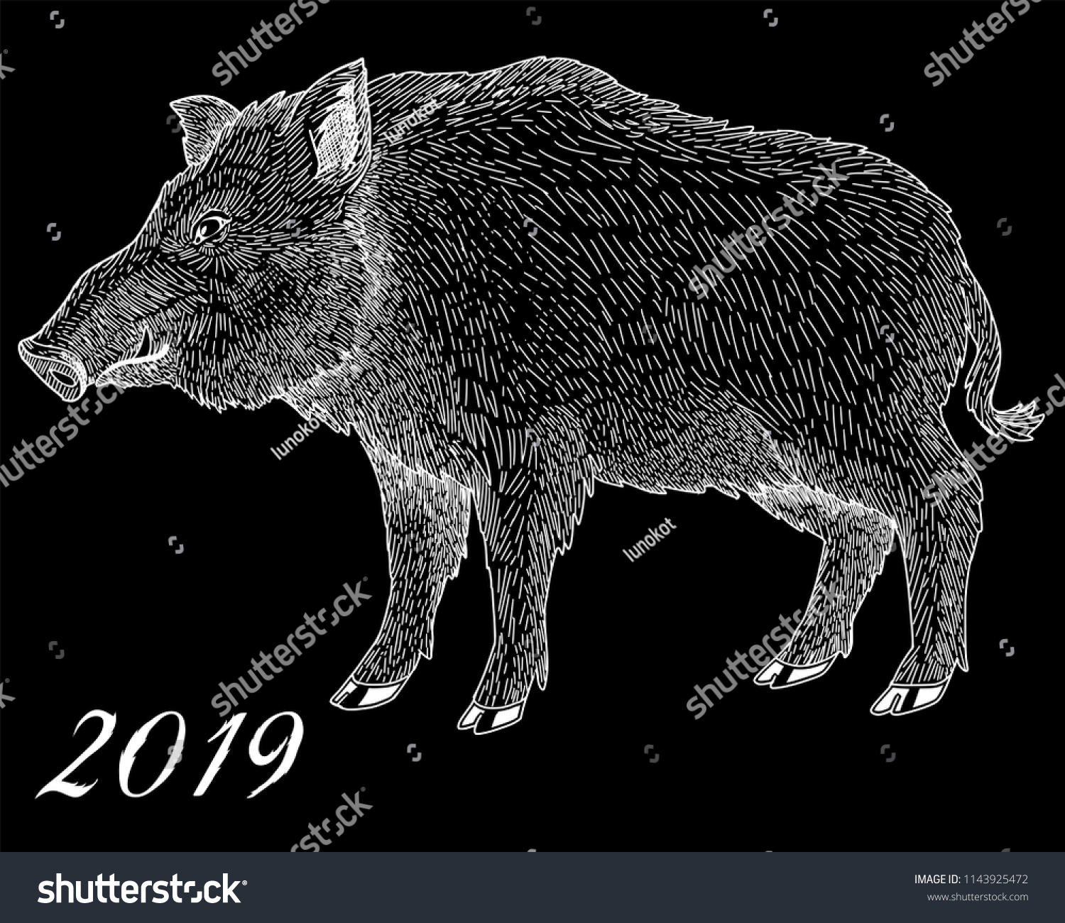 Pig Symbol 2019 Chinese New Year Stock Vector Royalty Free