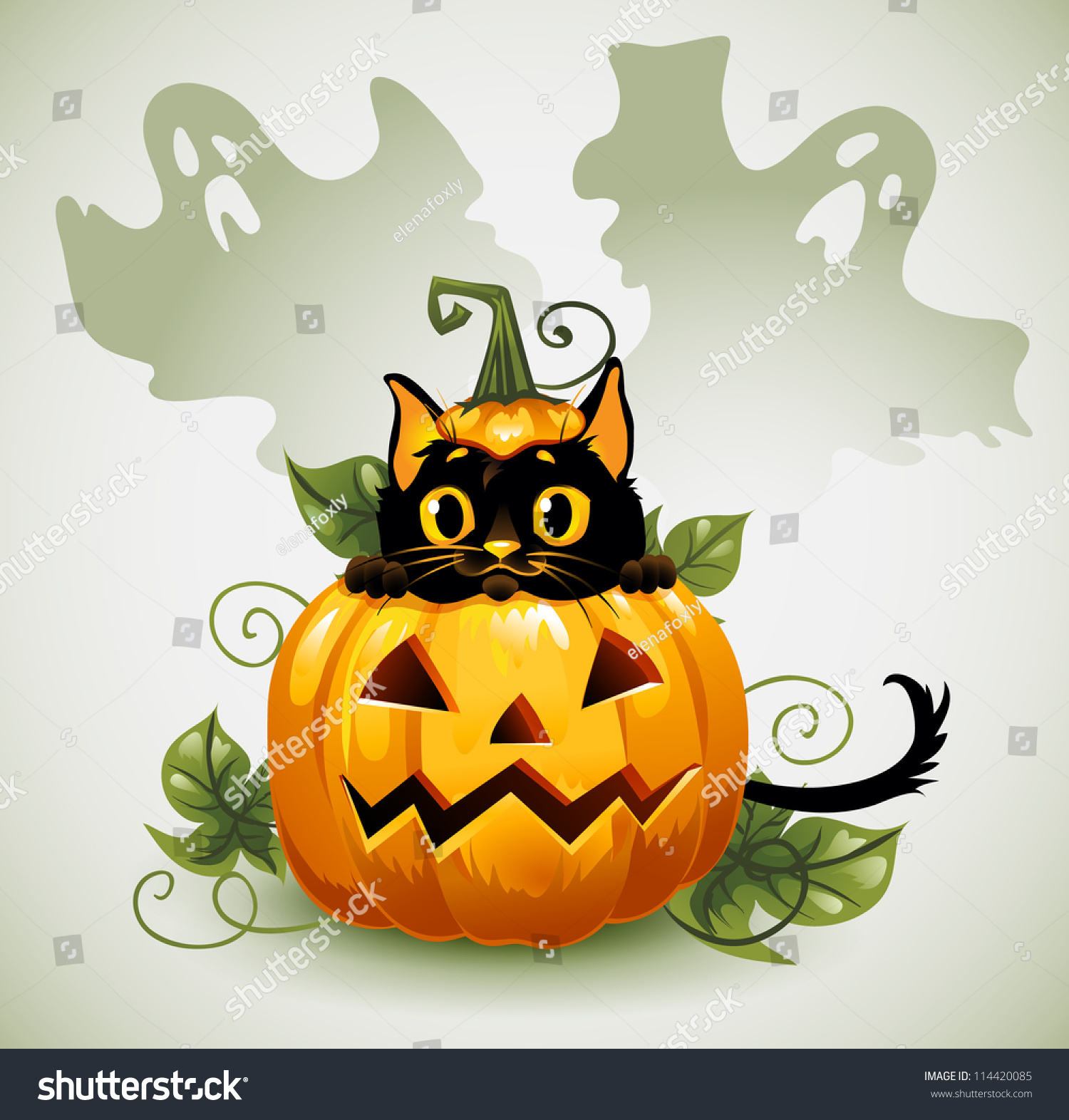Perfect Black Cat In A Halloween Pumpkin And Ghost. Background Is Separate.