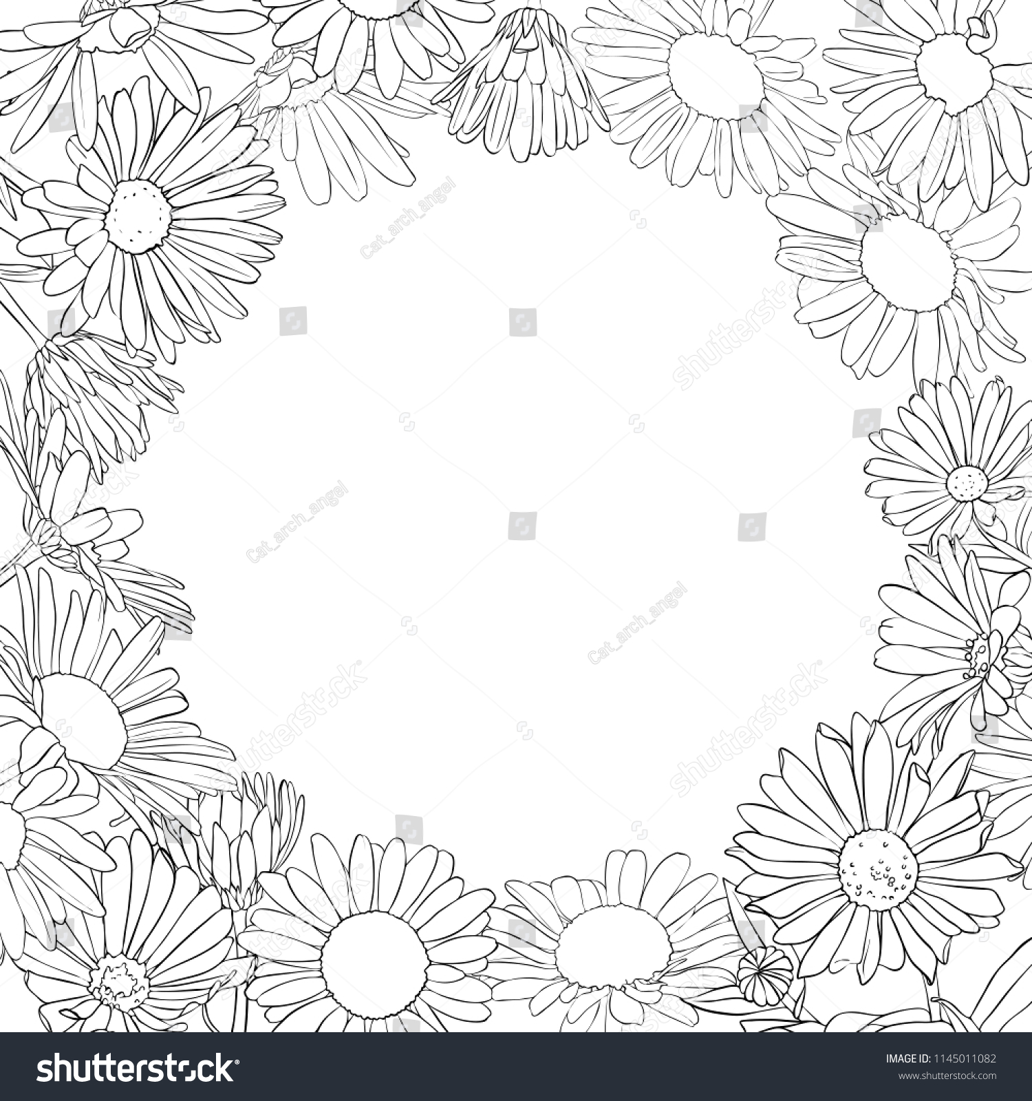 vector frame drawing daisy flowers floral stock vector royalty free