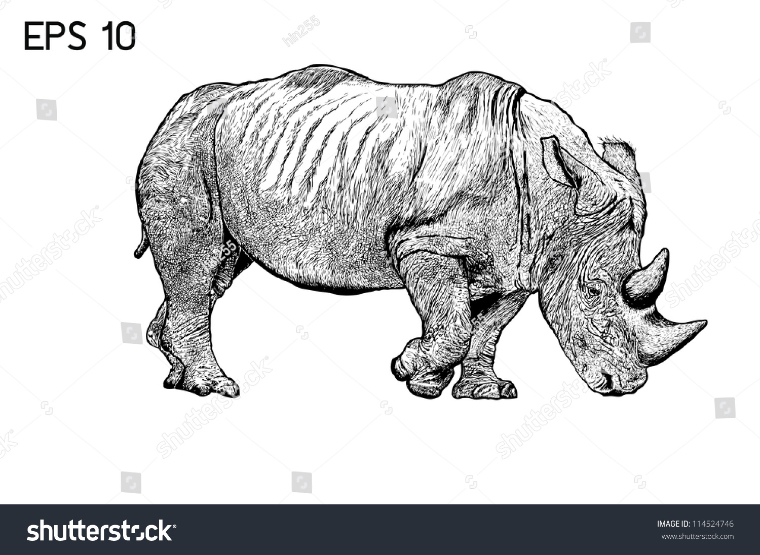 how to draw a rhino horn
