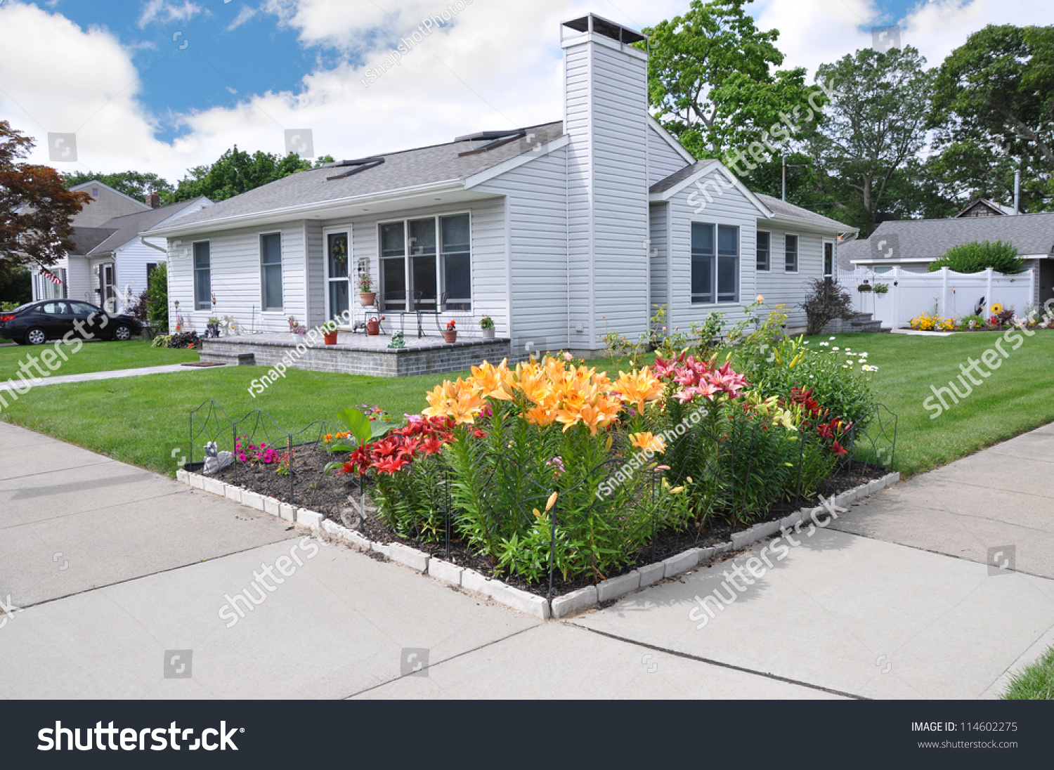 Residential flower gardens - Tiger Lily Flower Garden On Front Yard Property Of Suburban Ranch Style Home In Residential Neighborhood