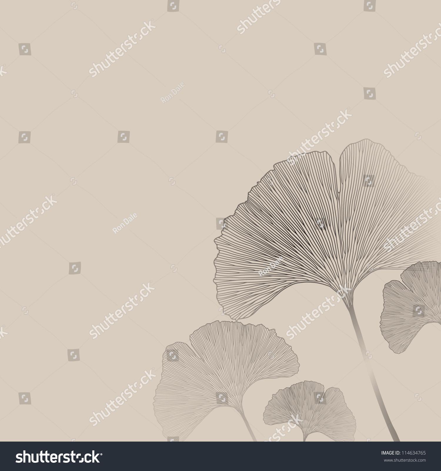 Ginkgo Leaf Background Biloba Leaves Gingko