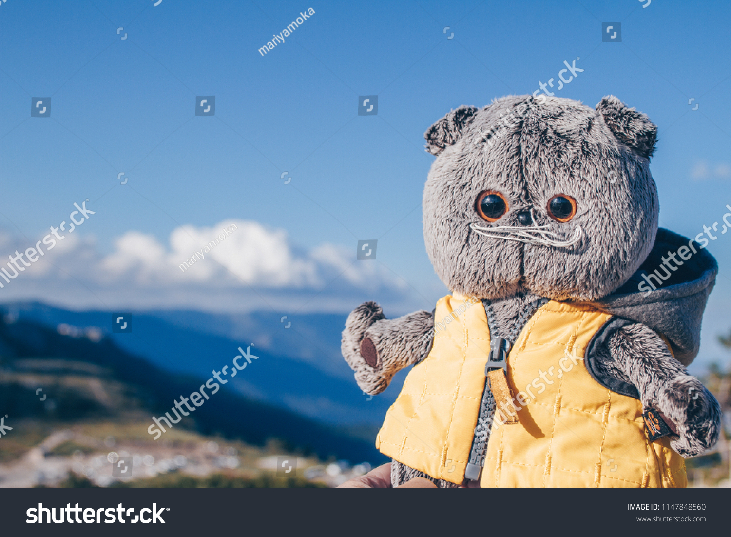 Toy Cat Yellow Jacket On Sky Stock Photo Edit Now 1147848560