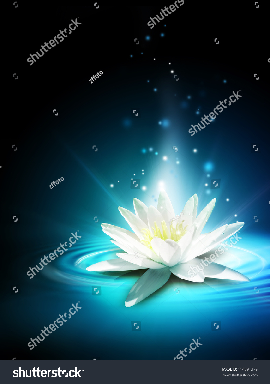 Magic lily flower on water surface stock illustration 114891379 magic lily flower on the water surface izmirmasajfo