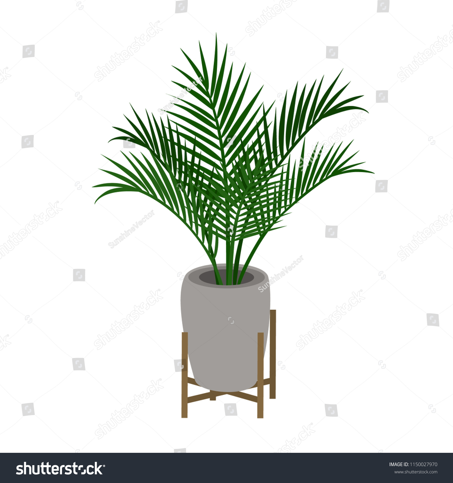 Home Indoor Palm Tree Houseplant In A Decorative Plant Stand