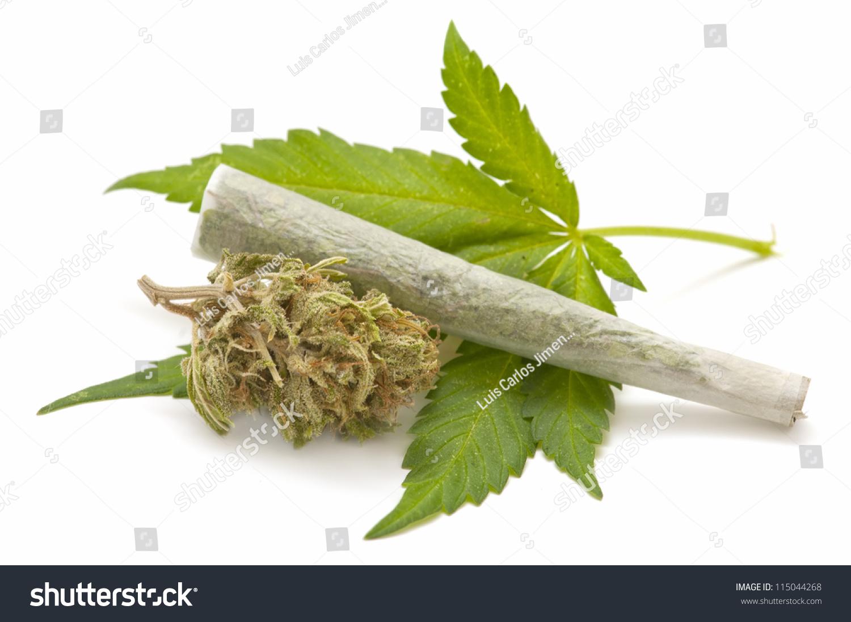 Cannabis thesis