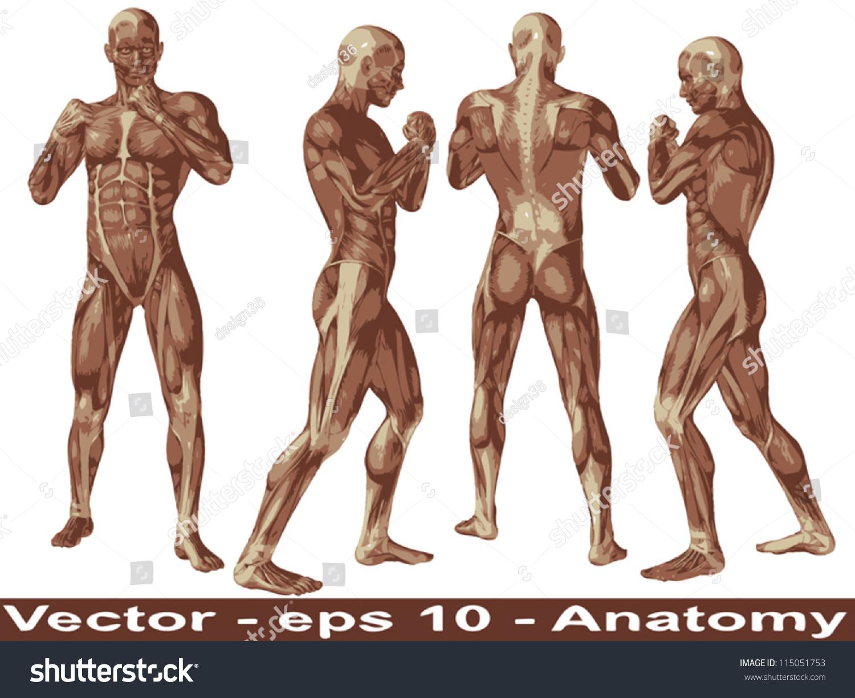 Vector Concept Conceptual Human Man 3 D Stock Vector 115051753 ...