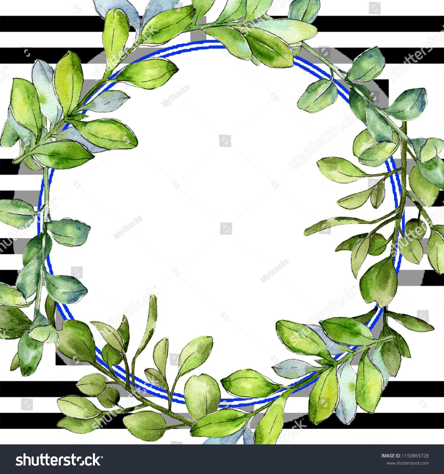 d35f533226ed Watercolor boxwood green leaf. Leaf plant botanical garden floral foliage.  Frame border ornament square