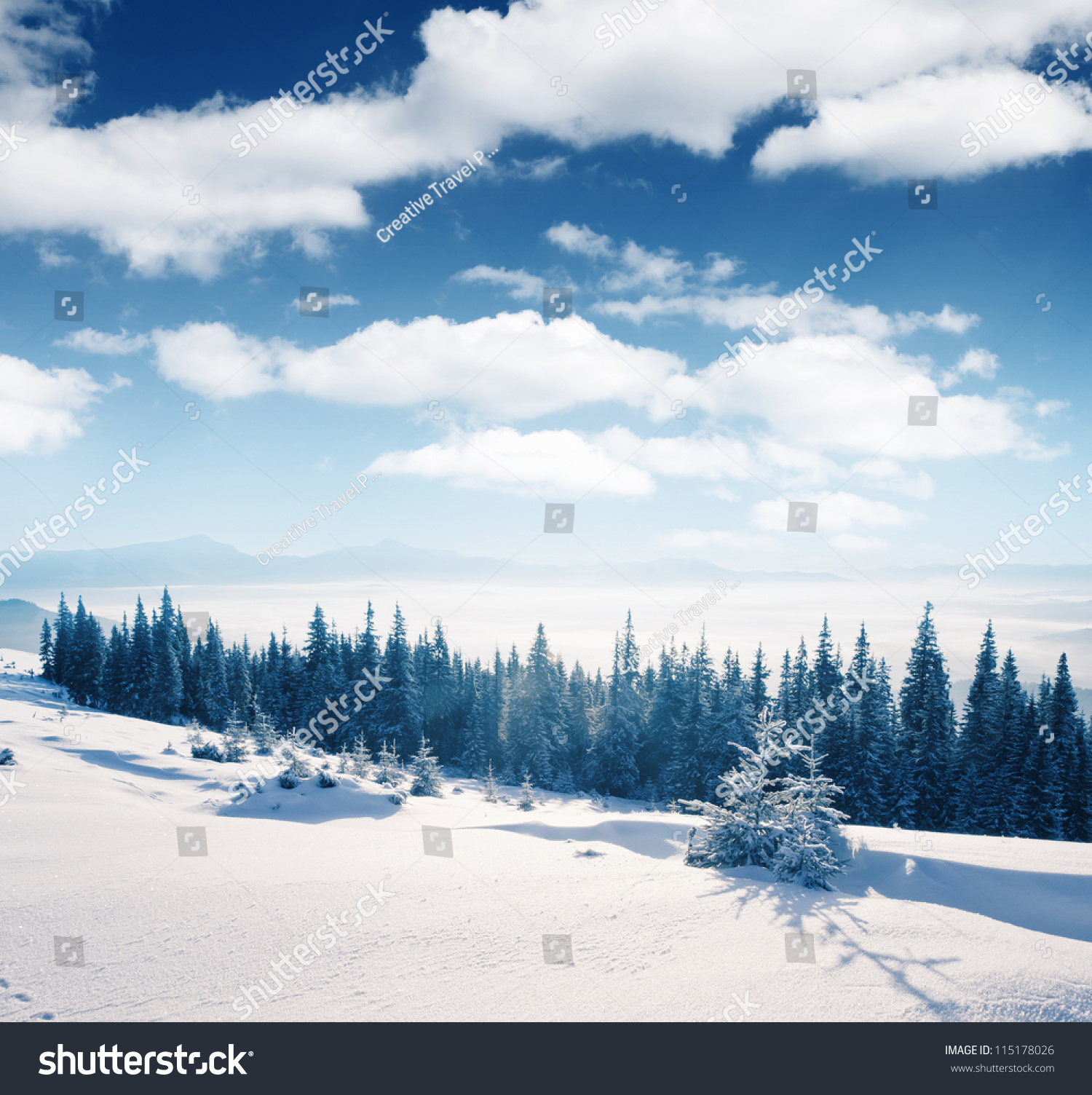 Beautiful Winter Panorama With Snow Covered Trees Stock