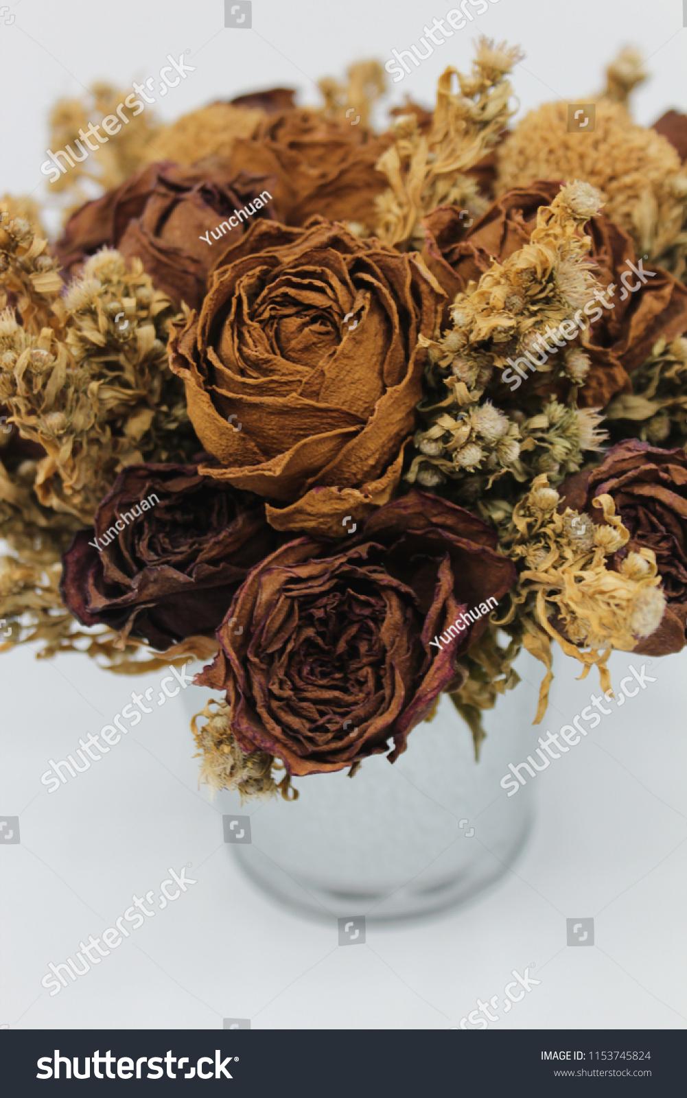 Close Shot Dried Flower Arrangement Vase Stock Photo Edit Now 1153745824