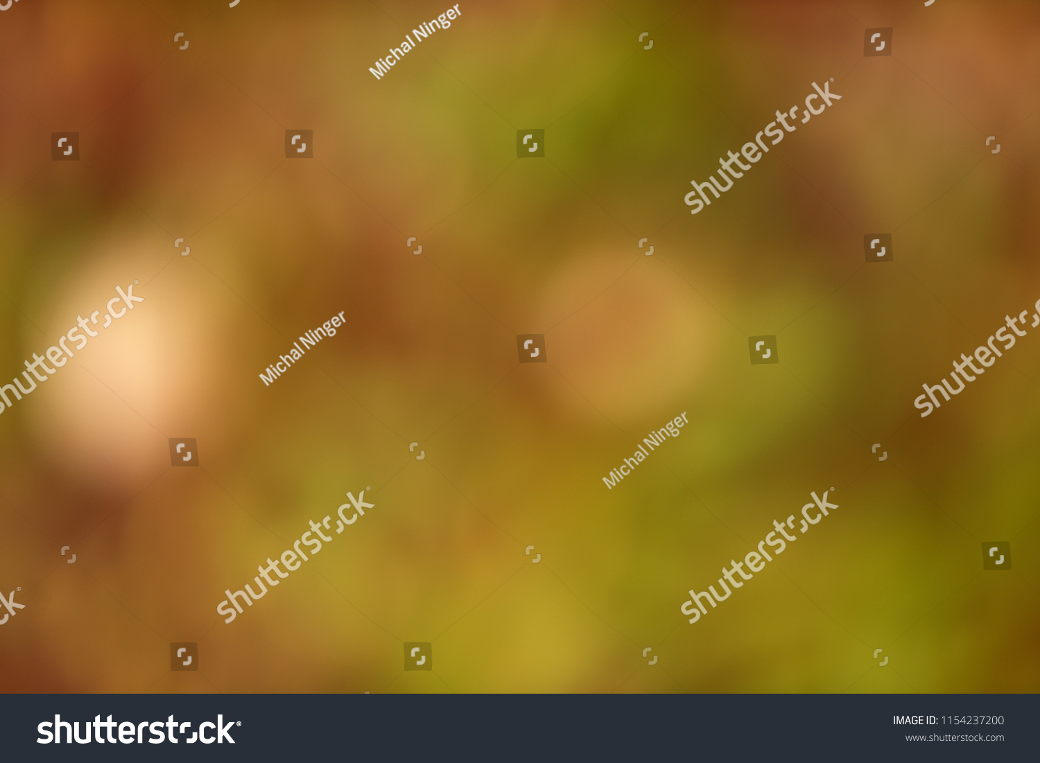 natural background, green and brown