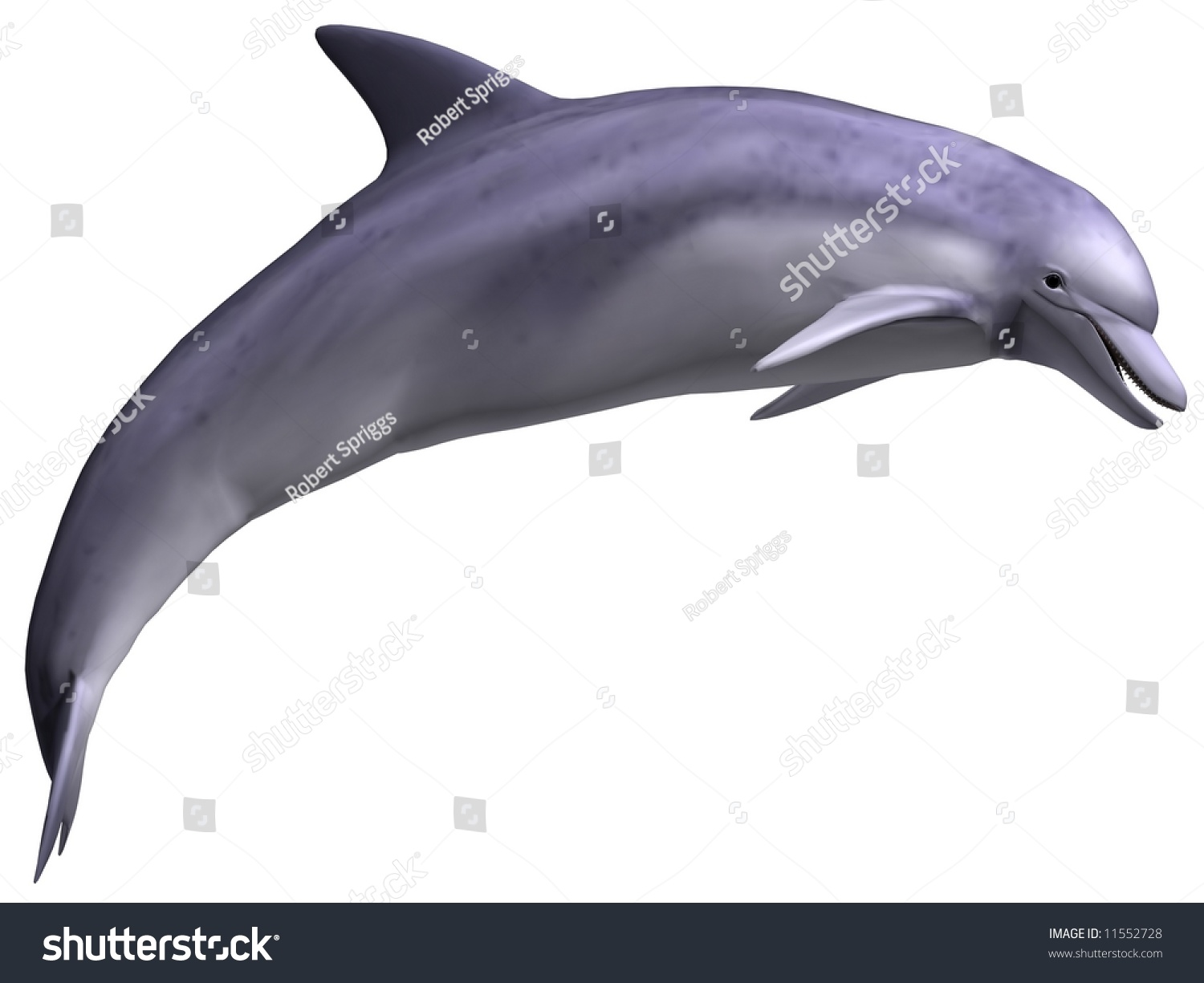 gorgeous leaping dolphin isolated on white stock illustration