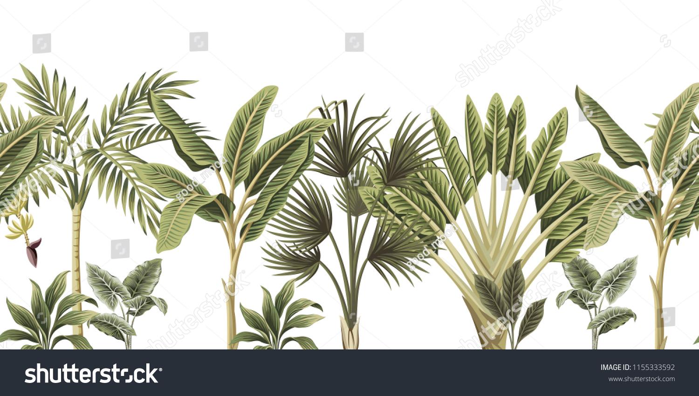 Tropical Vintage Botanical Palm Trees Banana Tree Floral Seamless Border White Background Exotic Jungle