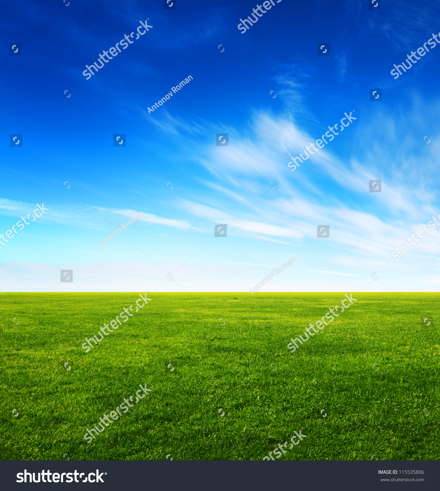 image green grass field bright blue stock photo (royalty free