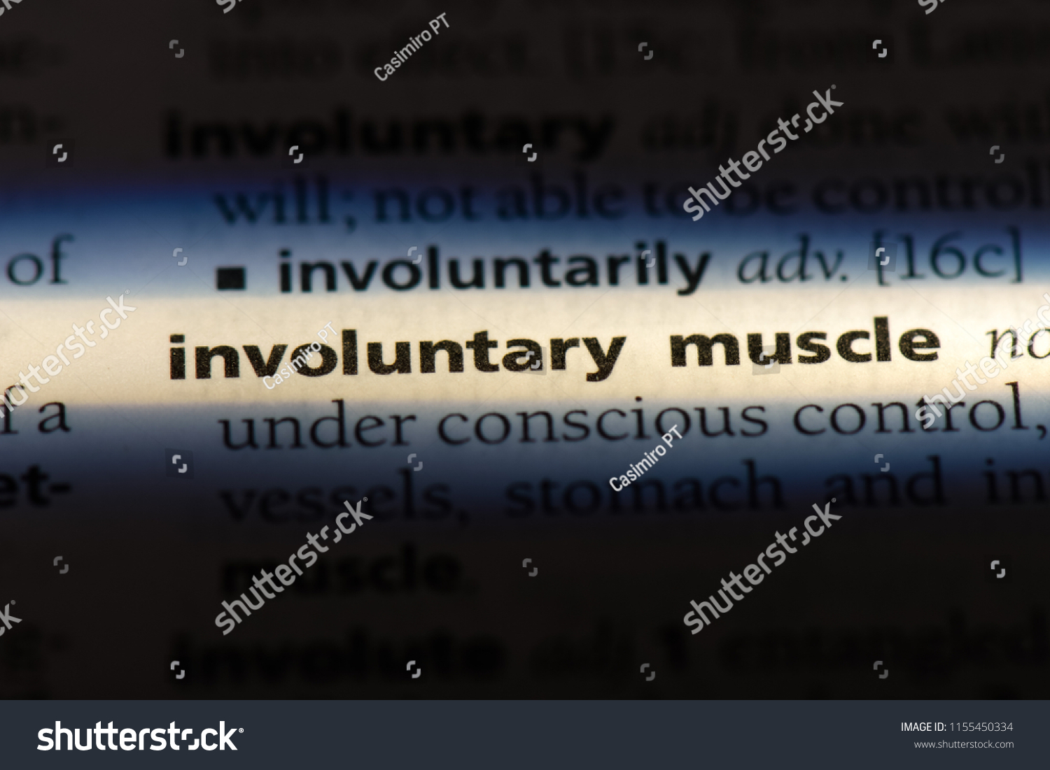 involuntary muscle word in a dictionary. involuntary muscle concept. #1155450334