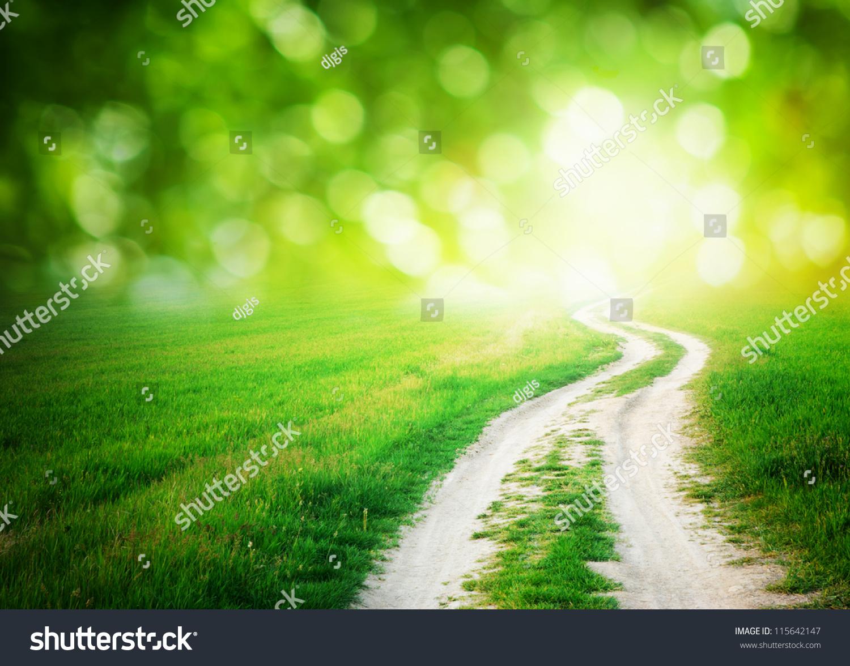 lane meadow deep blue sky nature stock photo edit now 115642147