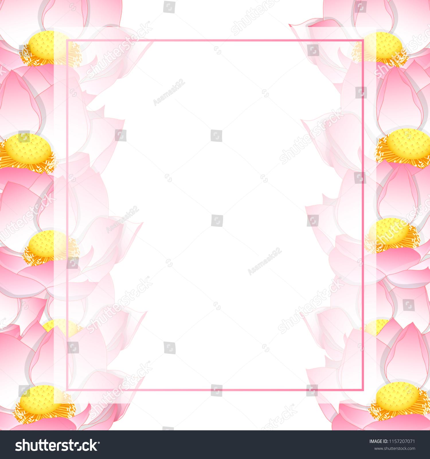 Pink Indian Lotus Banner Card Border Stock Vector Royalty Free