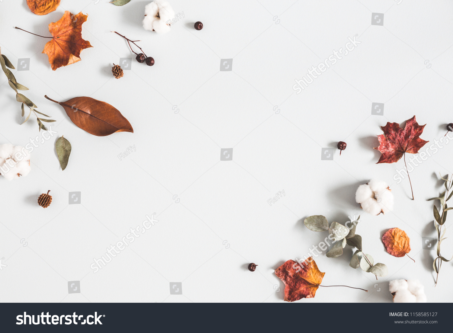 Autumn composition. Frame made of eucalyptus branches, cotton flowers, dried leaves on pastel gray background. Autumn, fall concept. Flat lay, top view, copy space #1158585127
