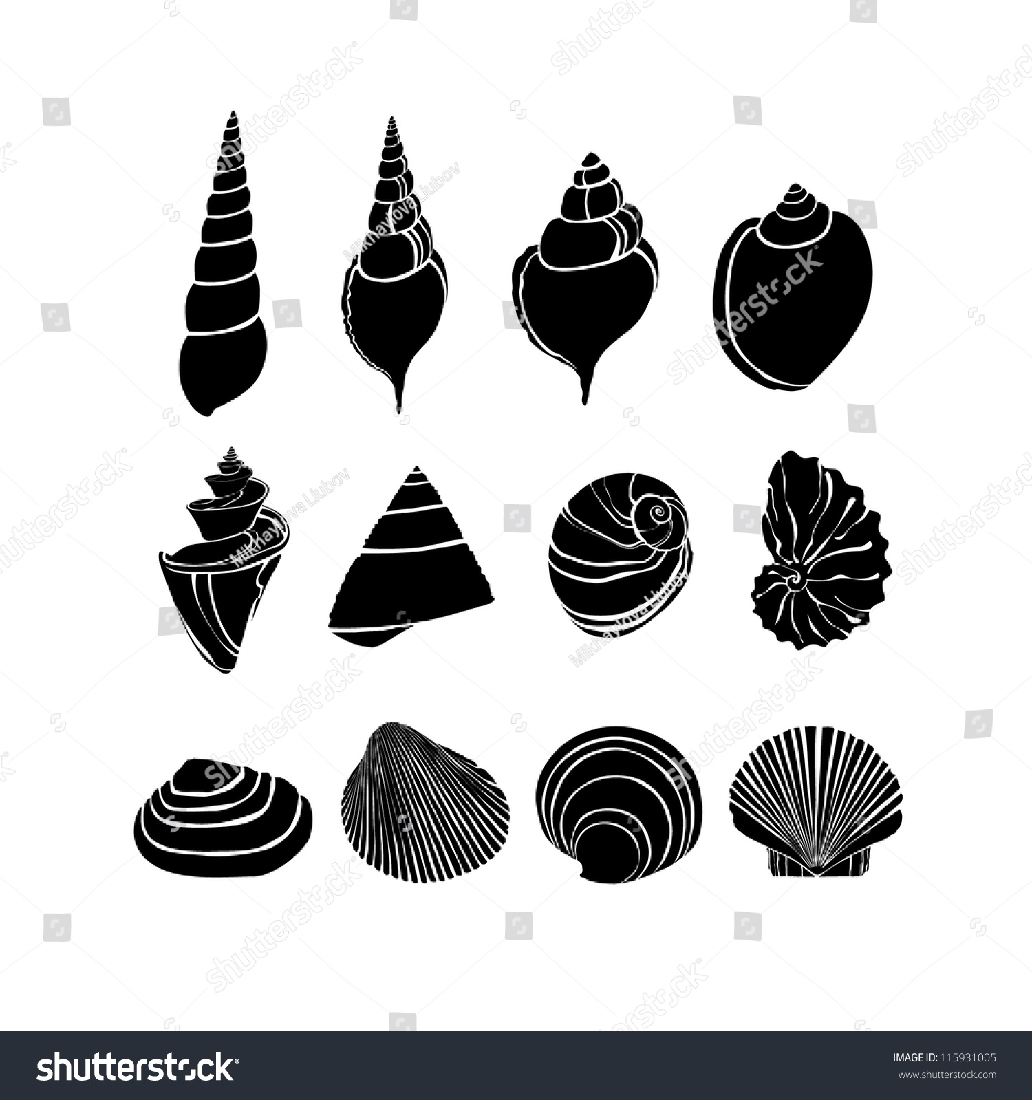 Set With Silhouettes Seashells Stock Vector Illustration ...