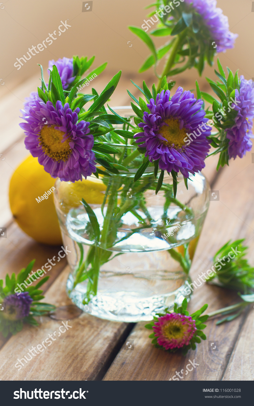 Beautiful Aster Flower Bouquet On Wooden Stock Photo Edit Now