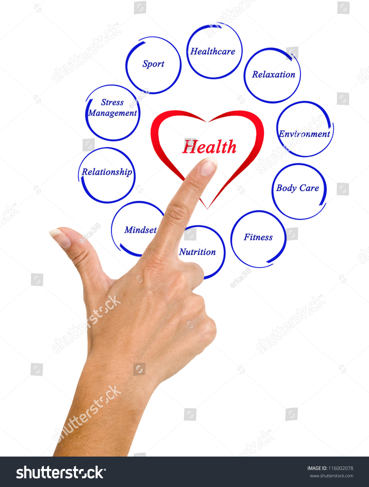Diagram Of Health Stock Photo 116002078   Shutterstock