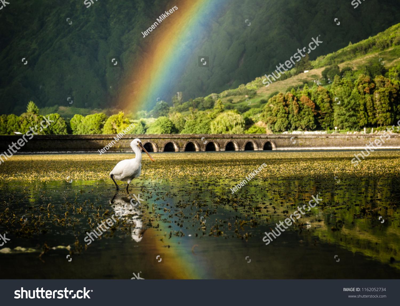 stock-photo-rainbow-at-the-azores-reflec