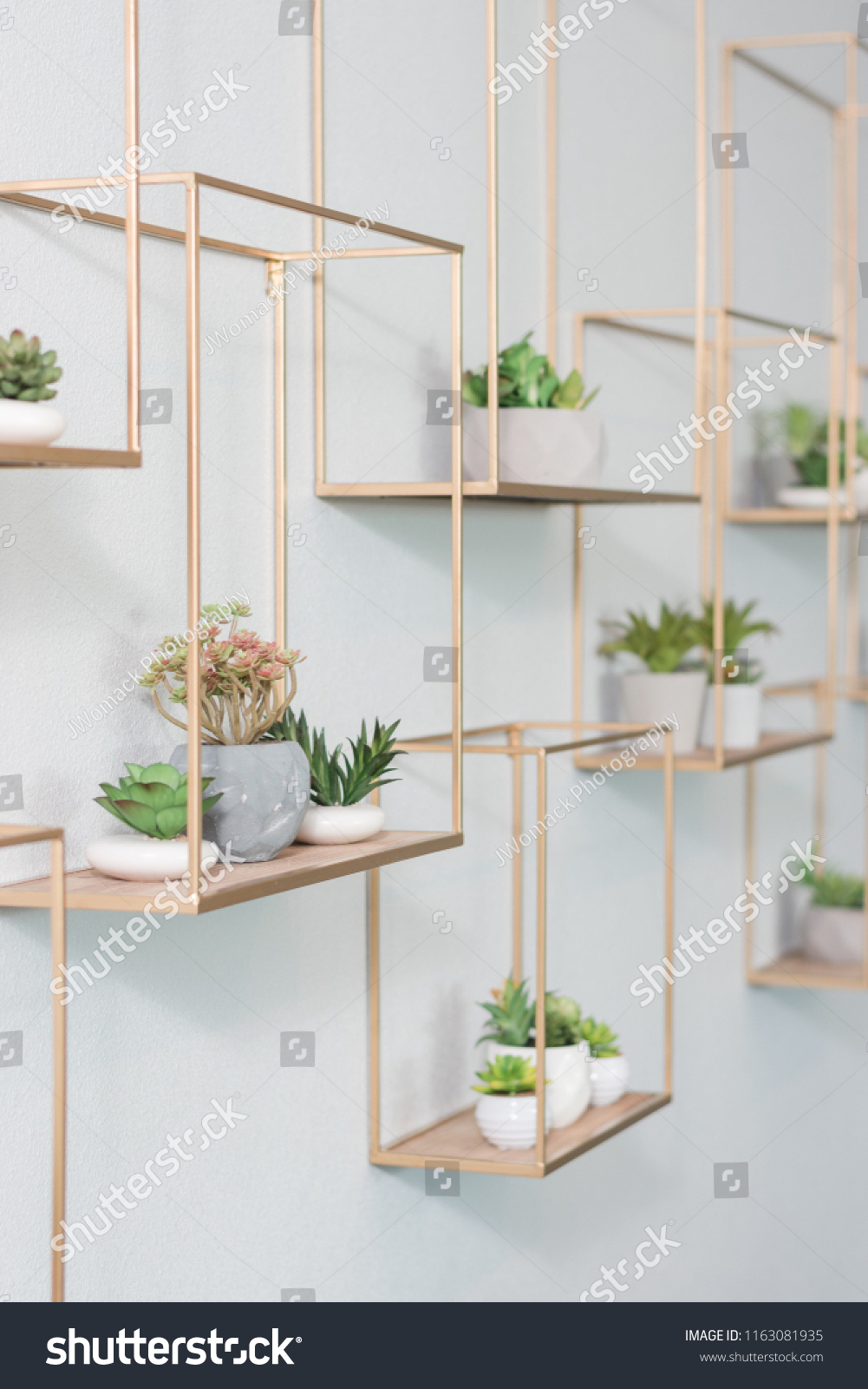 Succulent Hanging Wall Decor Stock Photo Edit Now 1163081935