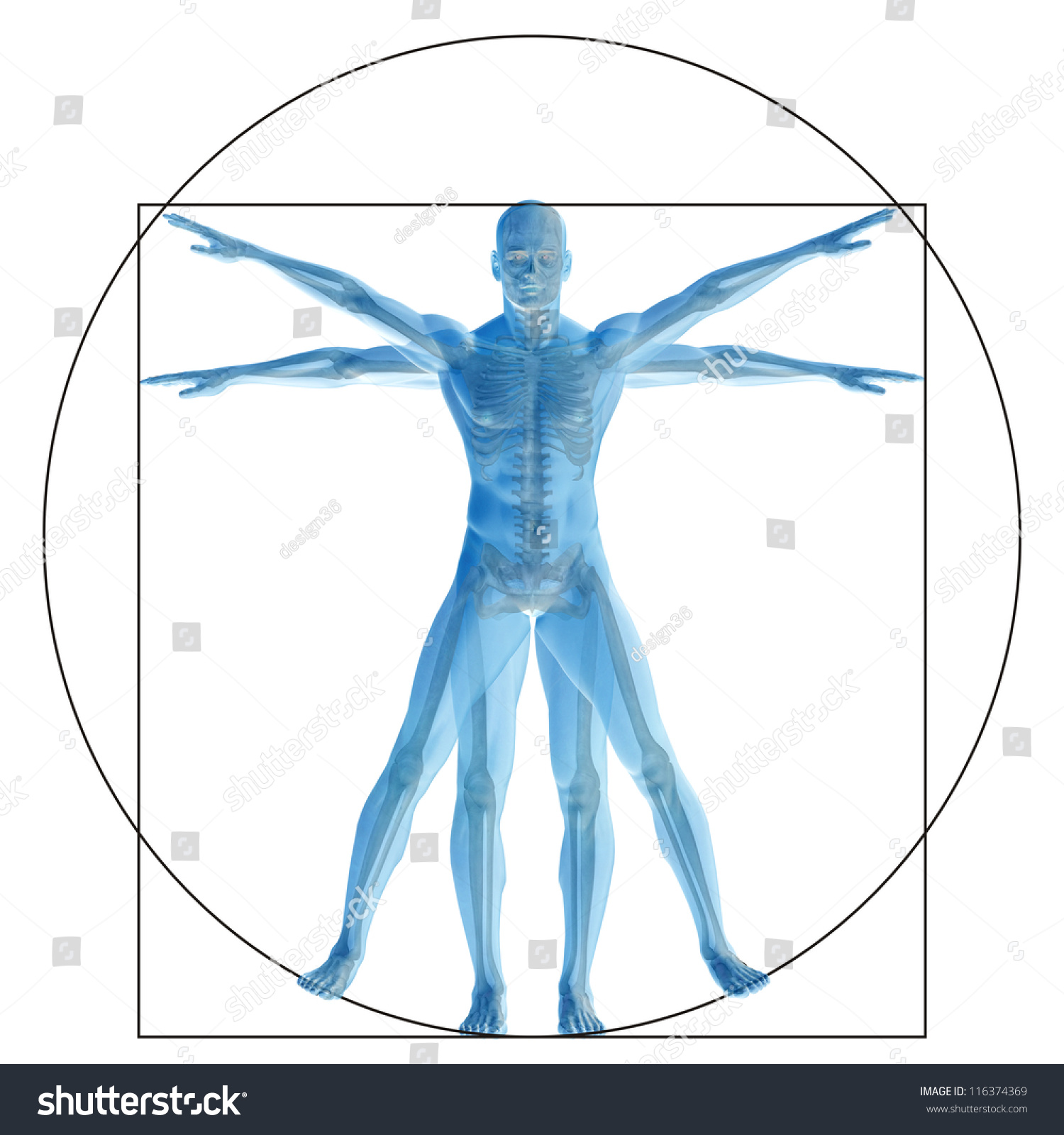 High Resolution Vitruvian Human Man Conceptmetaphor Stock ...