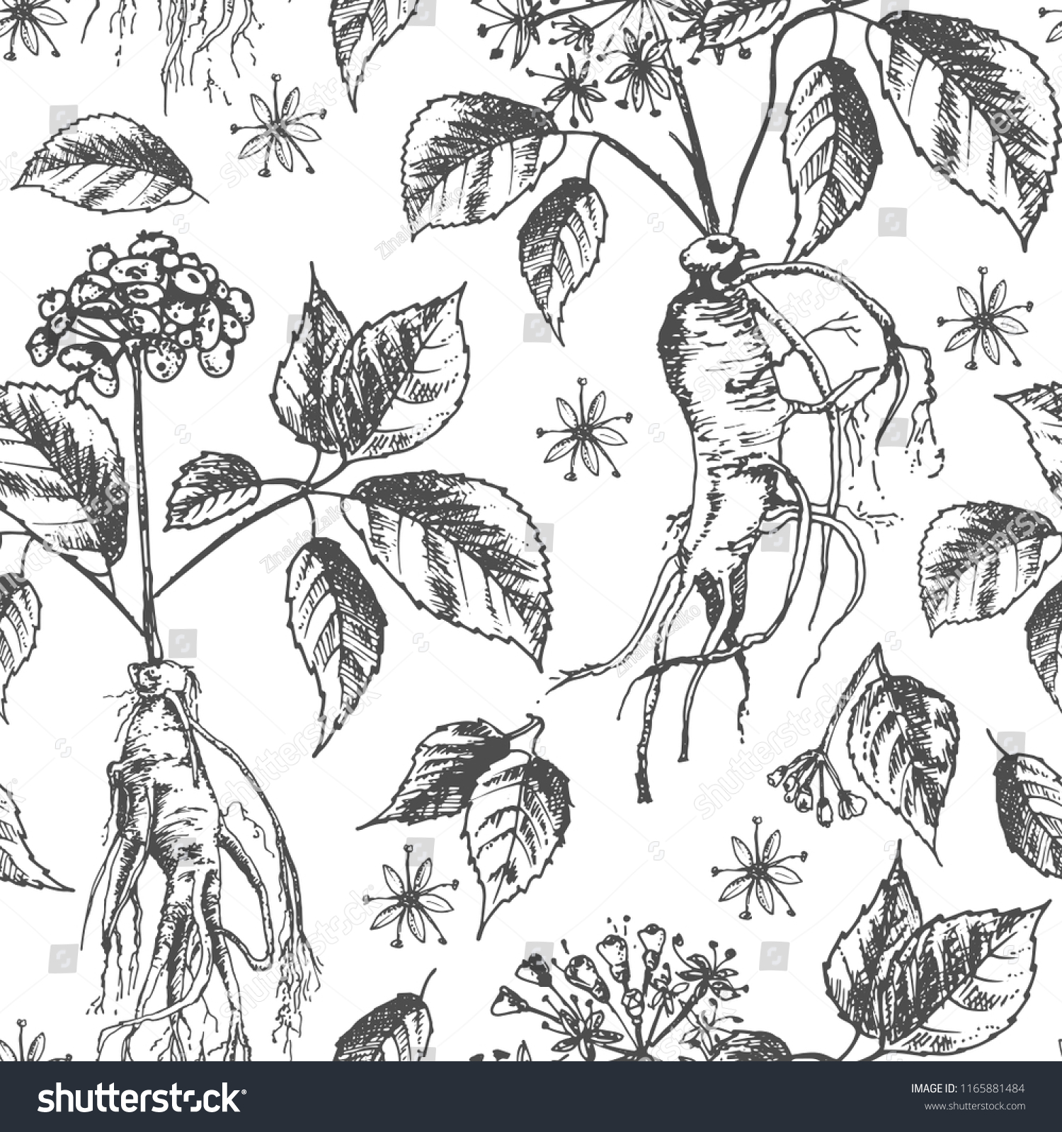 Realistic Botanical Ink Sketch Seamless Pattern Stock Vector