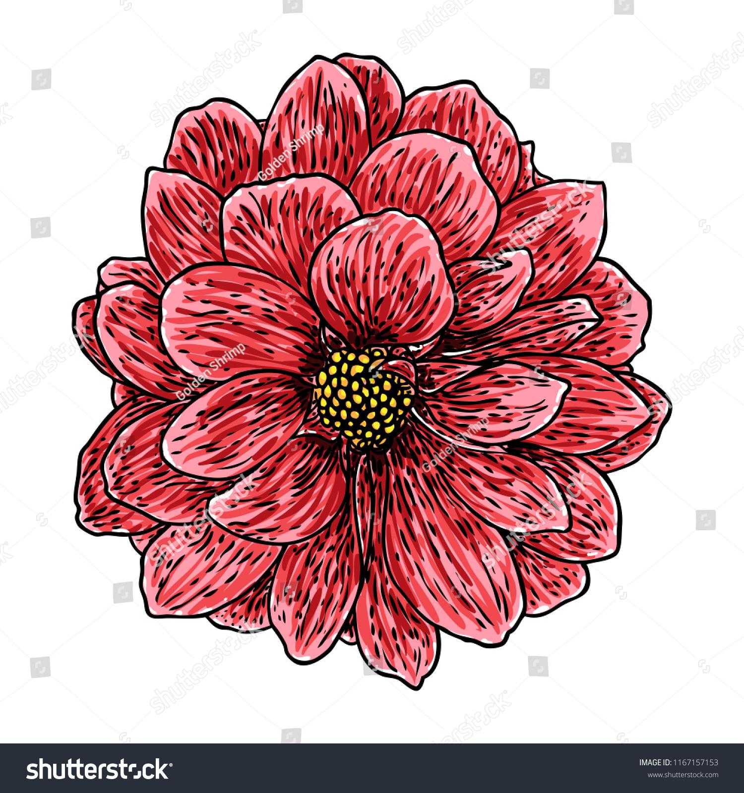 Dahlia flower botanical black color ink stock vector royalty free dahlia flower botanical black and color ink vintage illustration summer design elements related izmirmasajfo