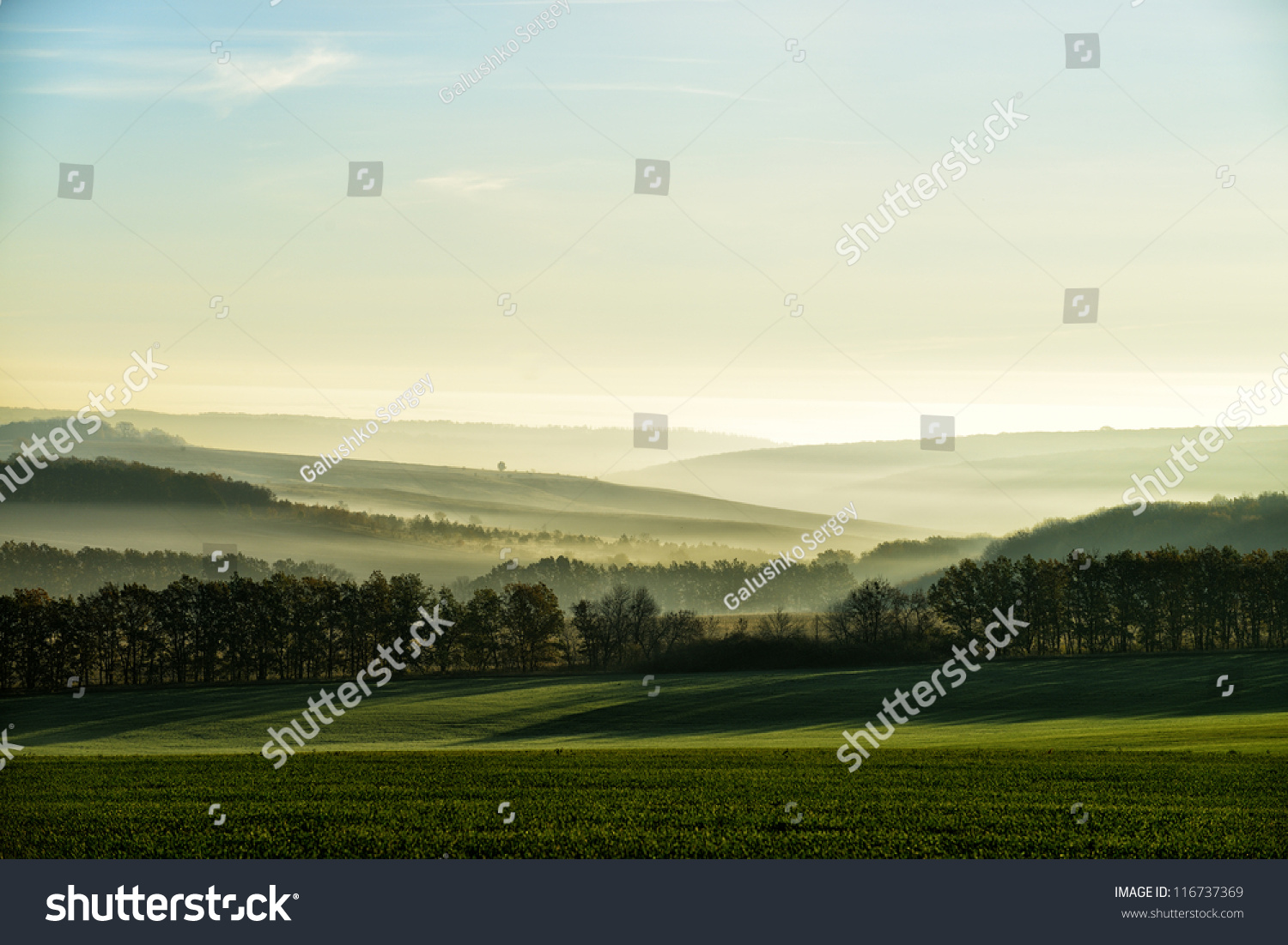 The hills in the fog. Morning landscape #116737369