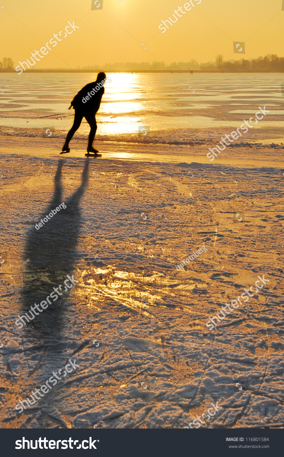 Ice skating - Ice skater at sunset on frozen lake in the Netherlands #116801584
