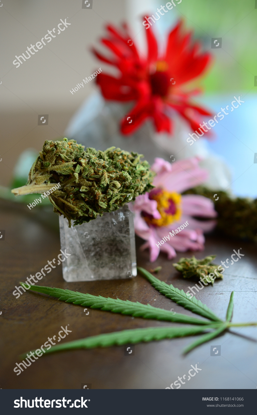 Lovely Cannabis Crystals Flowers Aesthetic Wood Stock Photo Edit Now 1168141066